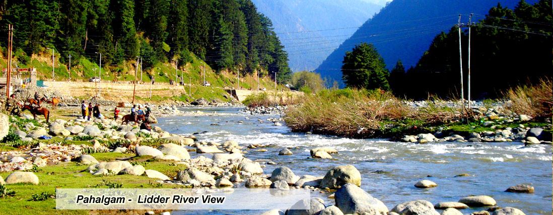 Hotels Booking In Jammu
